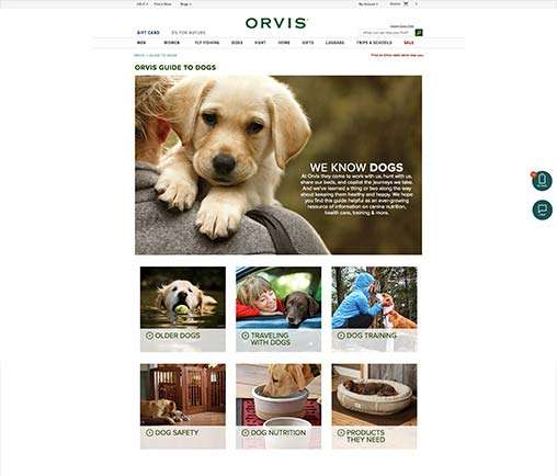 Orvis Guide To Dogs